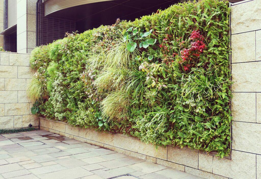 ZEB 壁面緑化